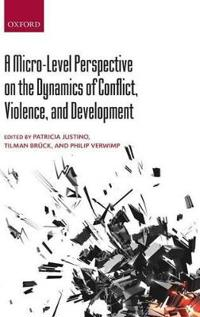A Micro-Level Perspective on the Dynamics of Conflict, Violence, and Development