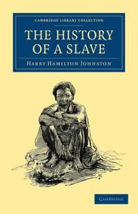 The History of a Slave