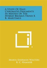 A Study of Half-Chromatid Fragments in Meiosis of the Hybrid Bromus Trinii X B. Maritimus