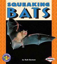 Squeaking Bats