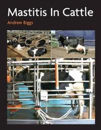 Mastitis in cattle