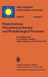 Photochemical, Photoelectrochemical and Photobiological Processes