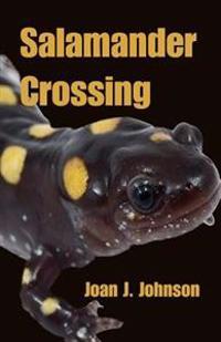 Salamander Crossing