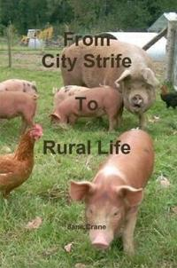 City Strife to Rural Life