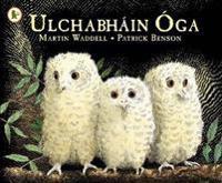 Ulchabhain Oga (Owl Babies)