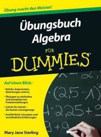 UEbungsbuch Algebra fur Dummies