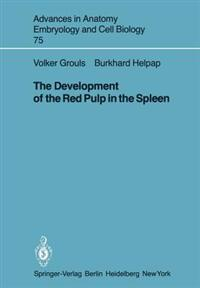 The Development of the Red Pulp in the Spleen