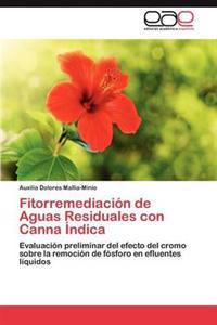 Fitorremediacion de Aguas Residuales Con Canna Indica