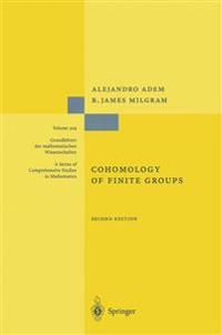 Cohomology of Finite Groups