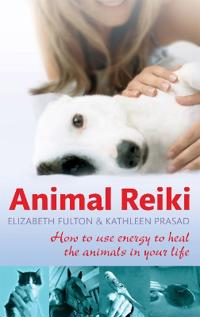 Animal reiki - how to use energy to heal the animals in your life