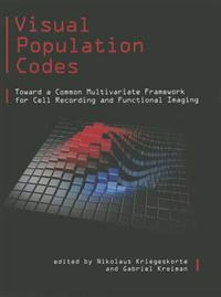 Visual Population Codes