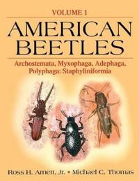 American Beetles, Volume I