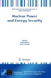 Nuclear Power and Energy Security