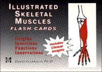 Illustrated Skeletal and Muscle Flash Cards