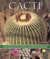 Cacti: An Illustrated Guide to Varieties, Cultivation and Care, with Step-By-Step Instructions and Over 160 Magnificent Photo