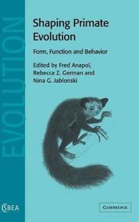 Shaping Primate Evolution