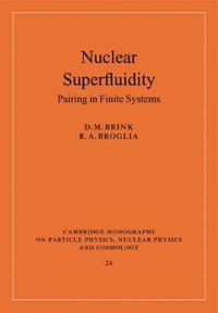 Nuclear Superfluidity