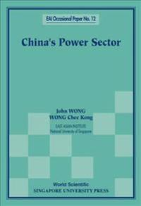 China's Power Sector