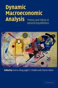 Dynamic Macroeconomic Analysis