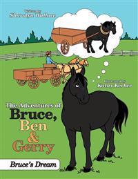 The Adventures of Bruce, Ben & Gerry: Bruce's Dream