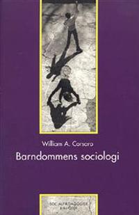 william corsaro William a corsaro department of sociology indiana university bloomington, in usa over 30 years ago in one of my first ethnographic studies of young children i was.