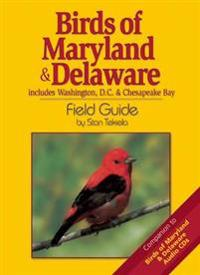 Birds Of Maryland & Delaware Field Guide