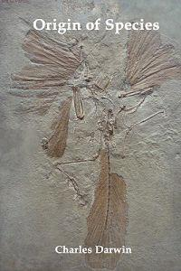 Origin of Species and the Foundations of the Origin of Species