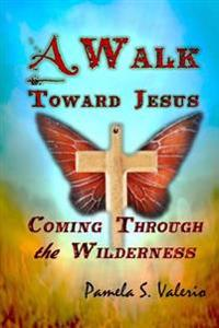 A Walk Toward Jesus: Coming Through the Wilderness