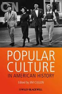 Popular Culture in American Hi