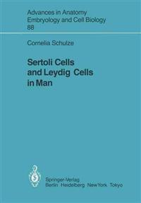 Sertoli Cells and Leydig Cells in Man
