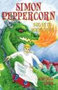 Simon Peppercorn, Log in to Magic Space
