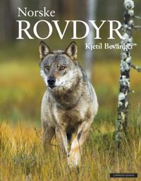 Norske rovdyr - Kjetil Bevanger | Ridgeroadrun.org