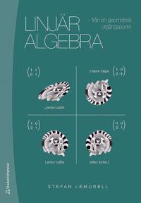 Linjär algebra : från en geometrisk utgångspunkt