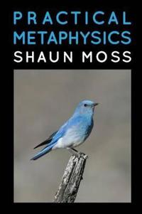 Practical Metaphysics