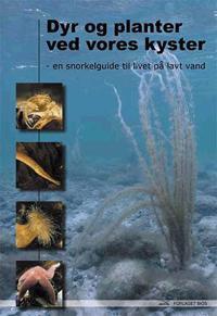 Dyr og planter ved vores kyster
