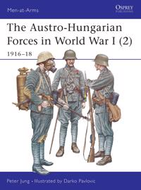 The Austro-hungarian Forces in World War I 2- 1916-18