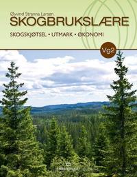 Skogbrukslære