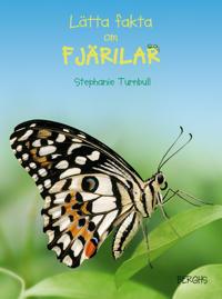 Lätta fakta om fjärilar