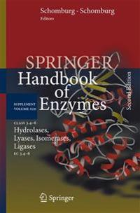 Class 3.4-6 Hydrolases, Lyases, Isomerases, Ligases