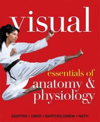 Visual Essentials of Anatomy & Physiology