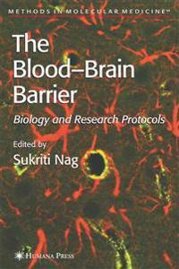Blood'brain Barrier