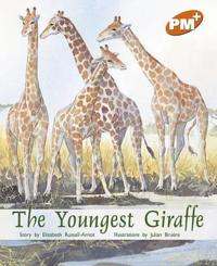 The Youngest Giraffe