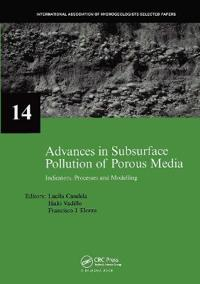 Advances in Subsurface Pollution of Porous Media