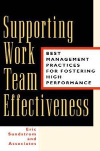 Supporting Work Team Effectiveness