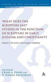 'what Does the Scripture Say?' Studies in the Function of Scripture in Early Judaism and Christianity, Volume 2