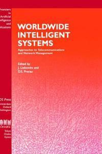 Worldwide Intelligent Systems