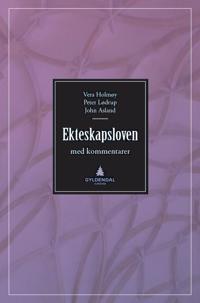 Ekteskapsloven og enkelte andre lover med kommentarer - Vera Holmøy, Peter Lødrup, John Asland pdf epub