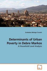 Determinants of Urban Poverty in Debre Markos