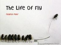 The Life of Fly