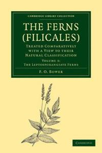 The Cambridge Library Collection - Botany and Horticulture The Ferns (Filicales)